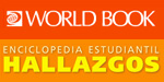 worldbook_hallazgos